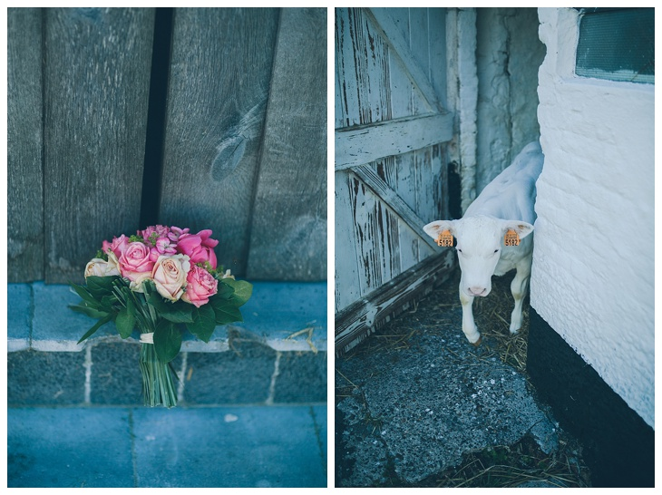 Huwelijksfotograaf-Brugge-Judith-Siebe-Klein-Reigaertsvliet_0058