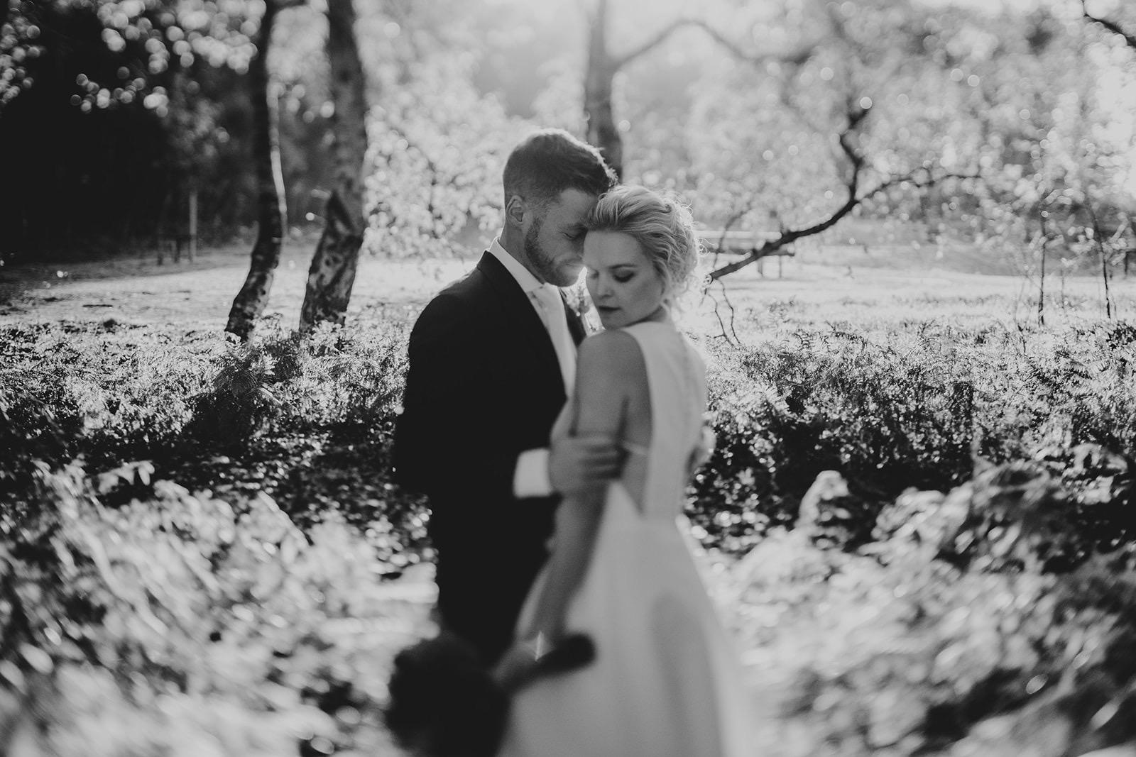 backlight couple wedding shoot